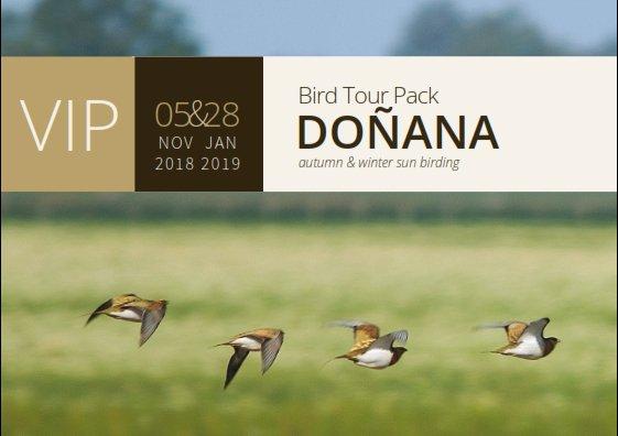 VIP Bird Tour Pack Doñana 5 Nov 18 & 28 Nov 19